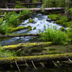 Umpqua-Headwaters.jpg